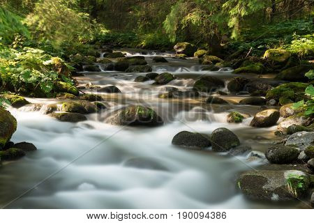 Wild mountain river in the green forest Slovakia