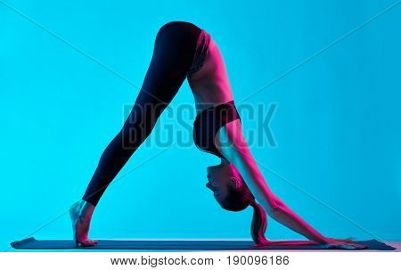 one caucasian woman exercising yoga Adho Mukha Svanasana exercices  in silhouette studio isolated on blue background