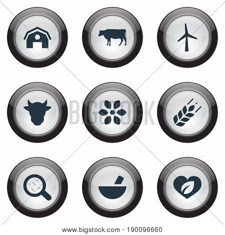 Vector Illustration Set Of Simple Energy Icons. Elements Bacteria, Pounder, Turbine And Other Synonyms Bacteria, Cow And Livestock.