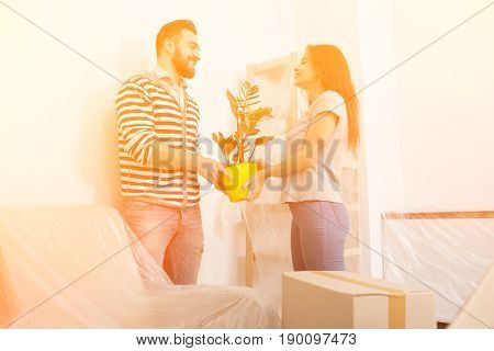 Toned image. Young man and woman standing in living room after relocating. Yong smiling couple holding flower pot in living room.