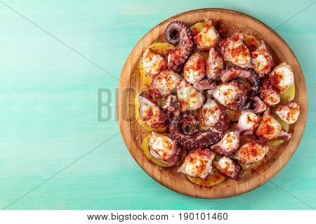An overhead photo of pulpo a la gallega, an octopus with boiled potatoes, typical Spanish dish, on a traditional wooden plate on a teal background with a place for text