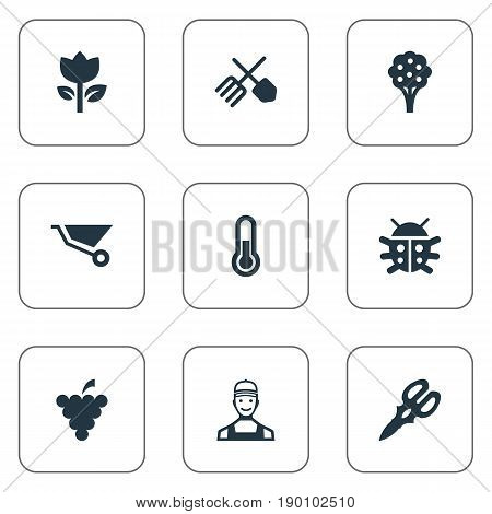 Vector Illustration Set Of Simple Gardening Icons. Elements Beetle, Wheelbarrow, Shear And Other Synonyms Horticulture, Shear And Farmer.