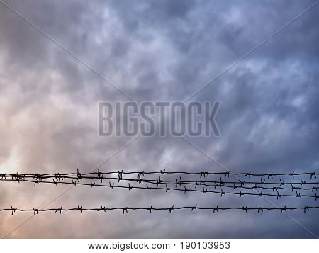 Barbed wire against the background of austere sky.