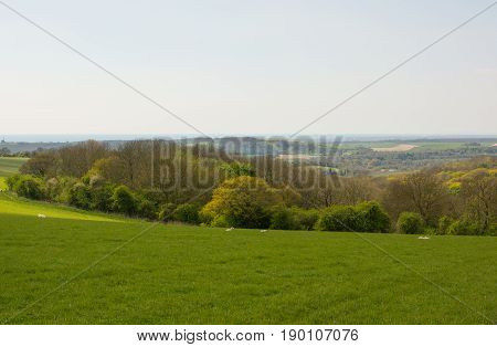 View to the sea from the South Downs near to Worthing in West Sussex England
