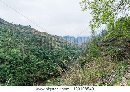 Green Hills Around Dazhai Village