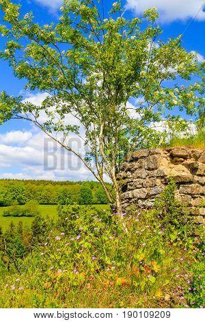 Castle Ruins of Kronenburg in Eifel Germany.
