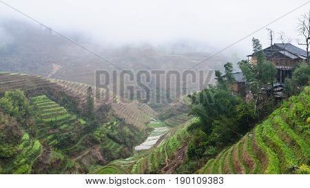 View Of Terraced Hills Of Tiantouzhai Village