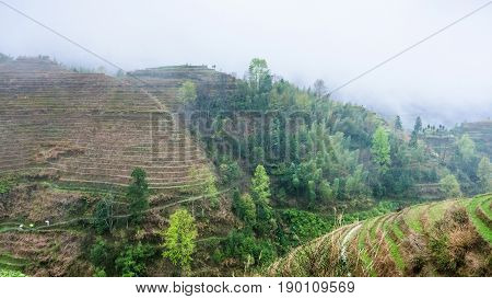 View Of Terraced Fields In Rain From Tiantouzhai