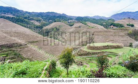 Terraced Mountain Near Dazhai Village In Country