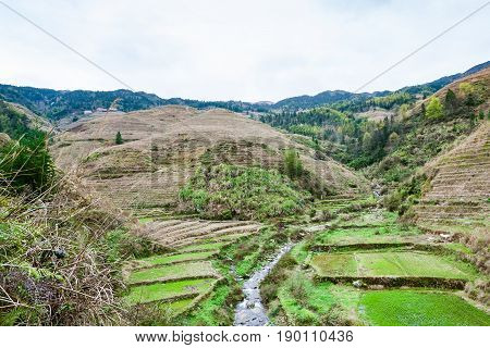 View Of Terraced Gardens And Creek In Dazhai
