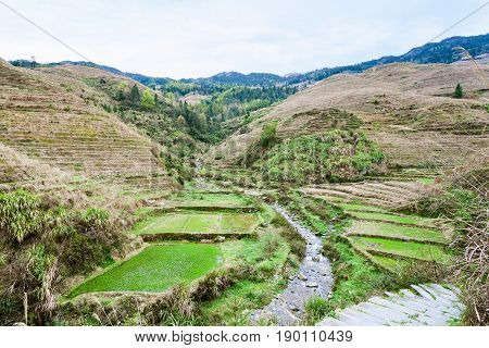 View Of Terraced Fields And Creek In Dazhai