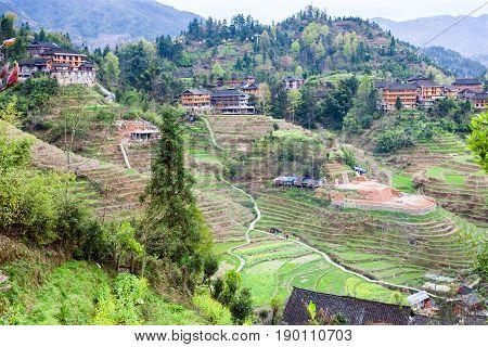 View Of Dazhai Village On Terraced Green Hills