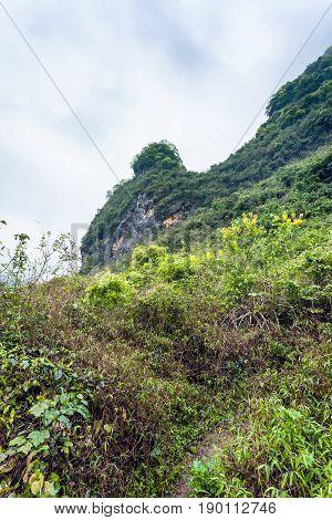 Overgrown Slope Of Karst Mountain In Yangshuo