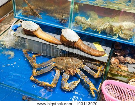 Geoduck And Crab In Fish Market In Guangzhou City