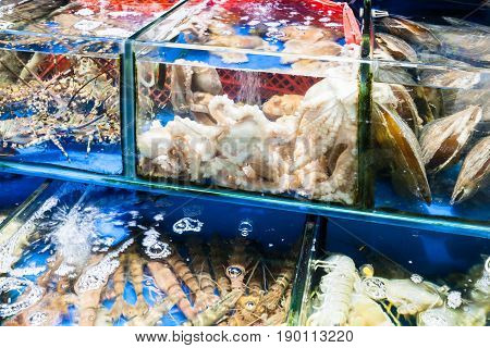 Octopus, Prawns In Fish Market In Guangzhou City