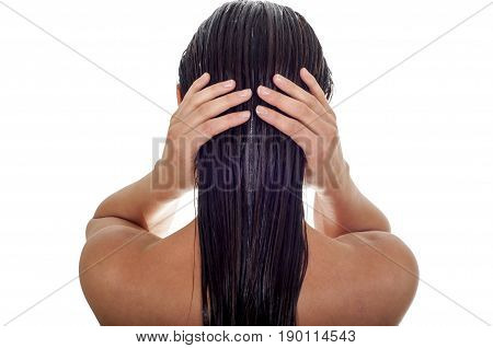 Hair care concept. Back view of woman with long wet hair white background