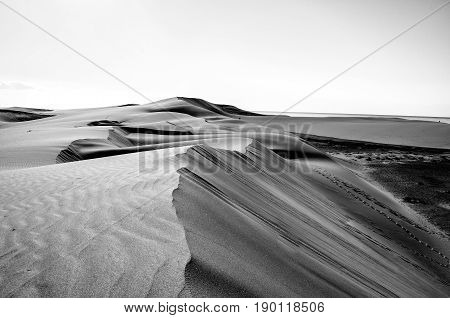 lost and wide dune landscape in black and white