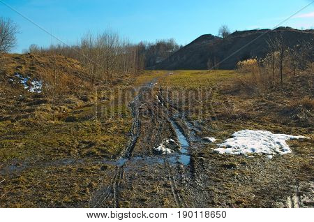 Bike tracks on a springtime mud path