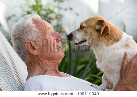 Old Man And Cute Dog Kissing