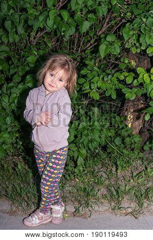 Portrait of a cute little girl crossed legs, in the evening, near bushes