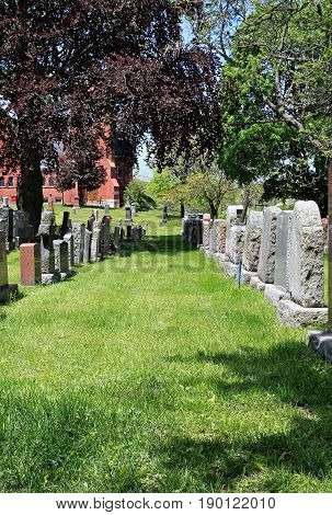 Looking between rows of tombstones in a cemetery