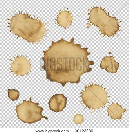 Coffee Stain Collection