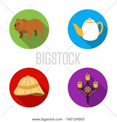 breed dog, teapot, brewer .England country set collection icons in flat style vector symbol stock illustration .