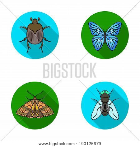Wrecker, parasite, nature, butterfly .Insects set collection icons in flat style vector symbol stock illustration .