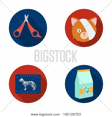 Scissors, cat, bandage, wounded .Vet Clinic set collection icons in flat style vector symbol stock illustration .