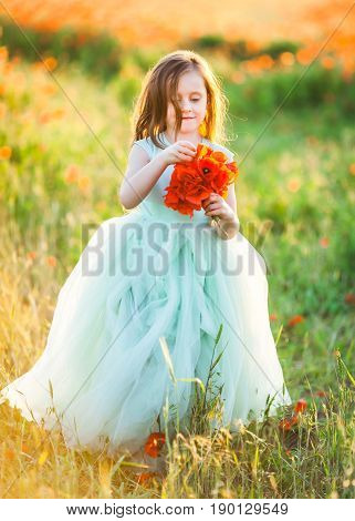 beauty, childcare, wedding, freedom concept - in orange light of sunset young fascinating model, wearing turquoise poofy dress with tulle skirt, walking through the field, holding bunch of poppies