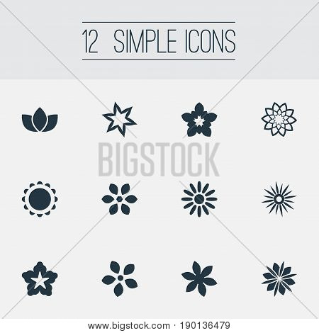 Vector Illustration Set Of Simple Blossom Icons. Elements Apple Blossom, Floret, Floral And Other Synonyms Floral, Camellia And Helianthus.