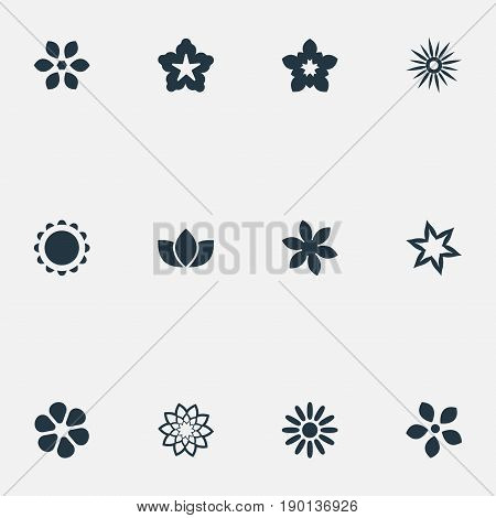 Vector Illustration Set Of Simple Rose Icons. Elements Apple Blossom, Daisy, Florist And Other Synonyms Laurel, Floret And Florist.