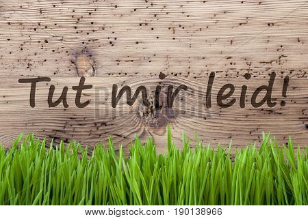German Text Tut Mir Leid Means Sorry. Spring Season Greeting Card. Bright Aged Wooden Background With Gras.