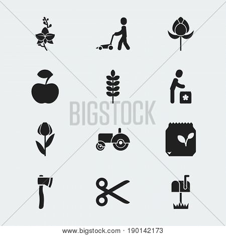 Set Of 12 Editable Agriculture Icons. Includes Symbols Such As Alstroemeria, Frond, Tulip And More. Can Be Used For Web, Mobile, UI And Infographic Design.