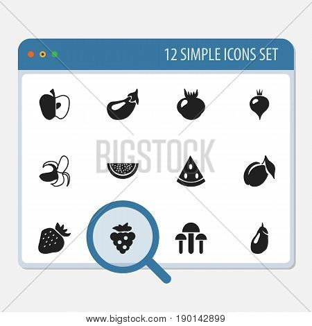 Set Of 12 Editable Berry Icons. Includes Symbols Such As Allium, Champignon, Eggplant And More. Can Be Used For Web, Mobile, UI And Infographic Design.