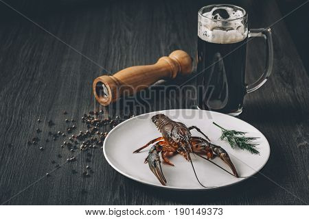 Food concept. Big fresh alive crayfish on white plate with green herbs in restaurant. Dark beer in glass and pepper grains around. Gray wooden background. Instagram vintage toning effect. Copy space.