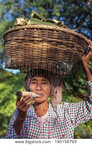 Bagan, Myanmar - October 11, 2016: Unidentified burmese woman smoking a traditional big tobacco cigar.