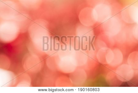 Abstract pink bokeh background look so sweet. Blurred sweet pink wallpaper for design with defocused concept. Pink bokeh background by abstract style. Valentine's and Christmas theme background. Lovely pink background with abstract concept.