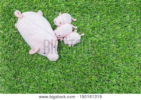 Closeup cute pink pig doll and three little pig on artificial grass floor textured background with copy space