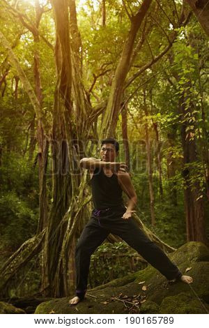 Asian man practicing yoga in jungle