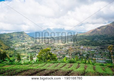 Above green terraced rice field in beautiful mountain landscape of Bali island. South East Asia travel background photography. Amazing tropical nature of Indonesia.