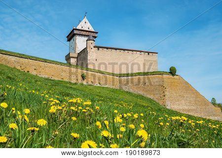 Hermann Castle in Narva fortress. Estonia Baltic States Europe