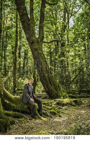 Caucasian businessman sitting in forest