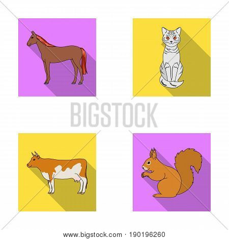 Horse, cow, cat, squirrel and other kinds of animals.Animals set collection icons in flat style vector symbol stock illustration .