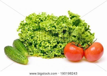 Leafy Vegetables Or Lettuce Leaf With Red Tomatoes And Cucumber