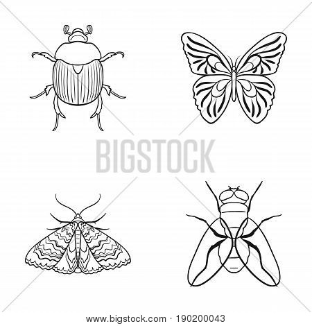 Wrecker, parasite, nature, butterfly .Insects set collection icons in outline style vector symbol stock illustration .