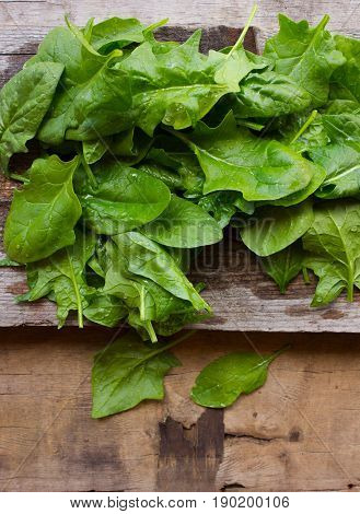 Fresh spinach leaves. Concept of healthy veggie food