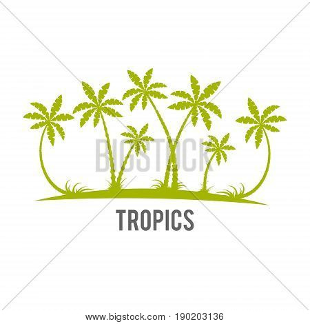Tropical palm trees island silhouettes. White vector palm tree flat icon. Rainforest jungle trees, plants, shrubs and bushes, paradise beach resort crooked palm trees, trendy flat design.