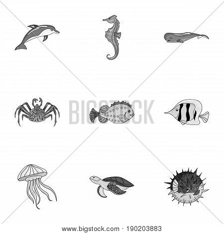 Marine and river inhabitants. Fish, whales, octopuses.Sea animals icon in set collection on monochrome style vector symbol stock  illustration.