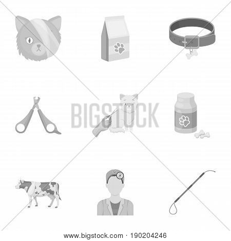 Vet clinic. Treatment of sick animals. Hospital for animals.Vet clinic icon in set collection on monochrome style vector symbol stock  illustration.